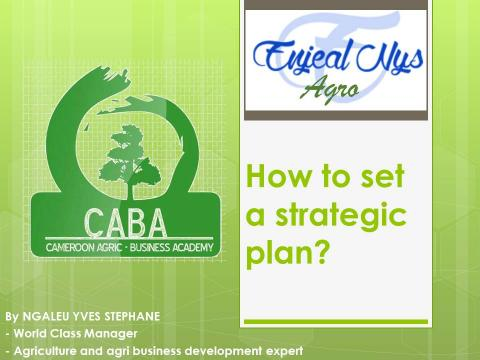 THE GROWTH OF AN ORGANISATION DEPENDS ON THE DEVELOPMENT OF ITS MEMBERS… FOR AN ORGANISATION TO FUNCTION EFFECTIVELY,… IT NEEDS TO HAVE A VISION…THIS VISION CAN BE ACHIEVED ONLY THROUGH A GOOD STRATEGIC PLANNING